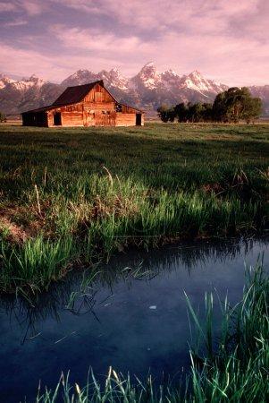 Old Barn Antelope Flats Grand Tetons Wyoming Vertical