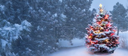 Photo for This decorated outdoor snow covered Christmas Tree glows brightly on this foggy Christmas morning. - Royalty Free Image