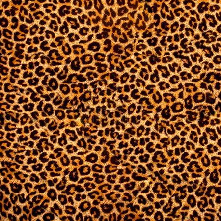 Photo pour Texture africaine fond - image libre de droit