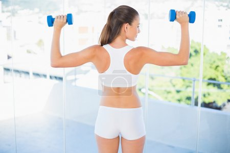 Woman standing back to camera lifting dumbbells