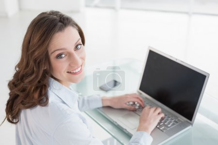 Portrait of smiling brown haired businesswoman using laptop