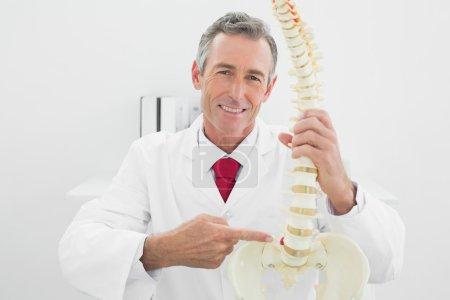 Smiling male doctor explaining spine in office