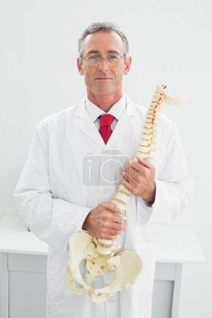 Male doctor holding skeleton model in office