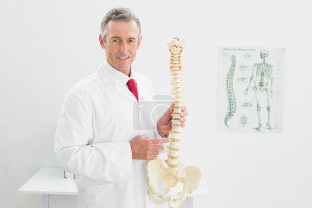 Doctor holding skeleton model in office