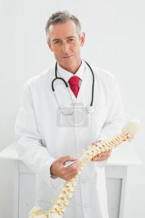 Smiling doctor holding skeleton model in office
