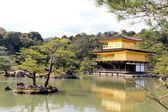 Starý japonský chrám zahrada