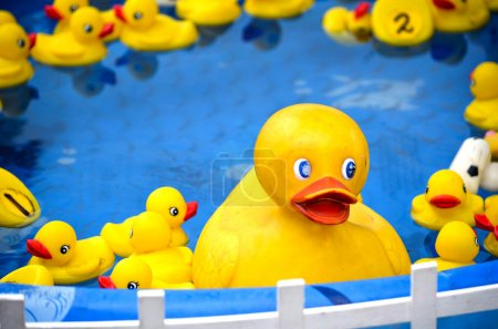 Rubber duckies at a carnival game