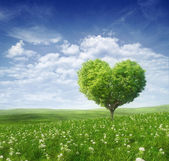 Tree in the shape of heart, valentines day background