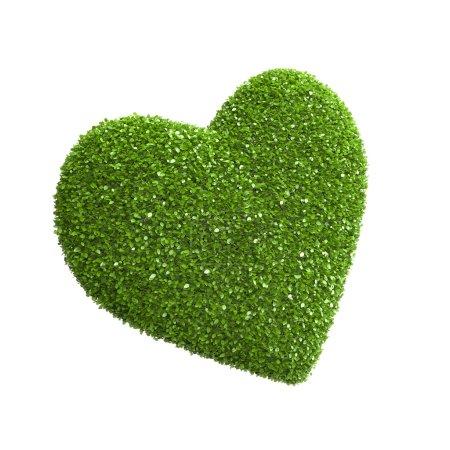Heart shape of green leaves