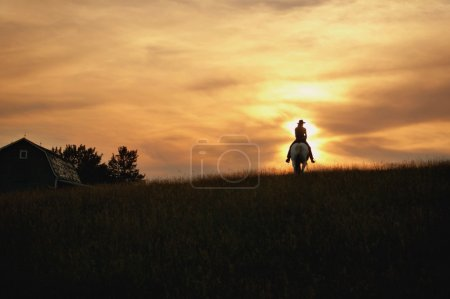 Photo for Silhouette Of Horseback Rider - Royalty Free Image
