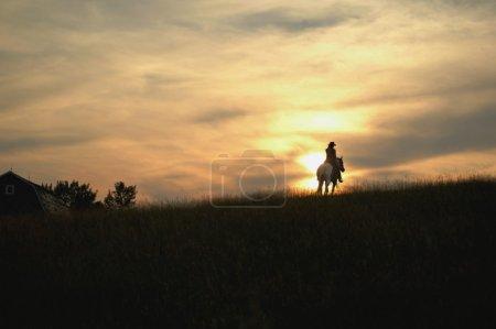 Silhouette of Horseback Rider