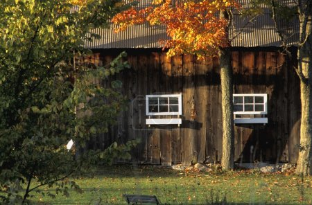 Wooden Building Surrounded By Autumn Trees