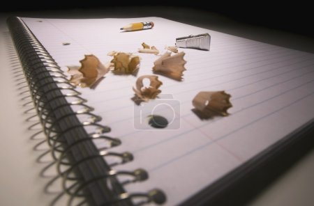 Shavings On A Pad Of Paper