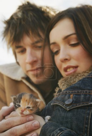 Couple Cuddle A Kitten