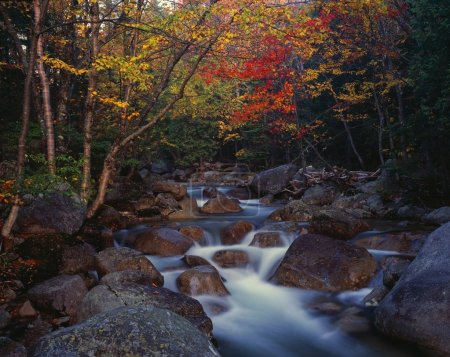 Roaring Brook, Autumn Colors, Baxter State Park