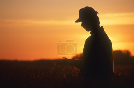 Farmer Looking At Crop