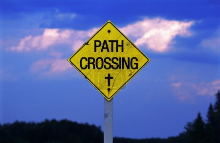 Path Crossing