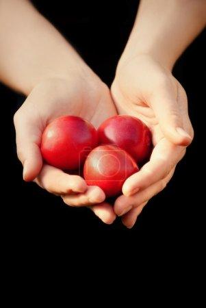 Hands Full Of Red Fruit