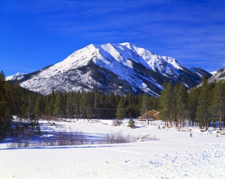 Winter Scene In The Rocky Mountains