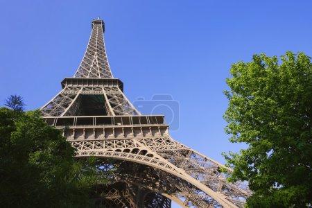 Foto de Torre Eiffel - Imagen libre de derechos