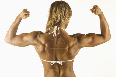 Photo pour Femme musculaire - image libre de droit