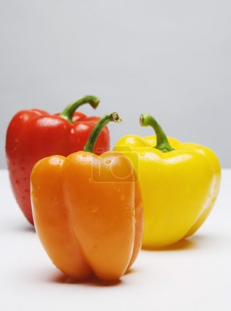 Photo for Bell Peppers - Royalty Free Image