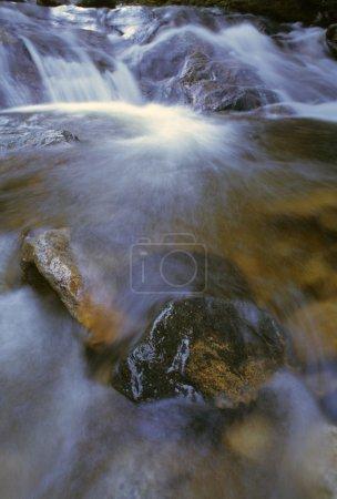 Stream Rushing Over Rocks