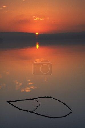 Stick Reflection At Sunrise
