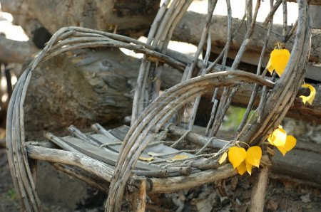 Willow-Branch Chair