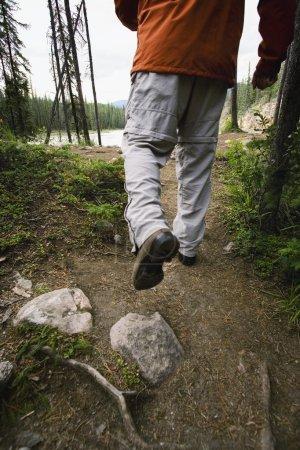 Foto de Caminar por un sendero - Imagen libre de derechos