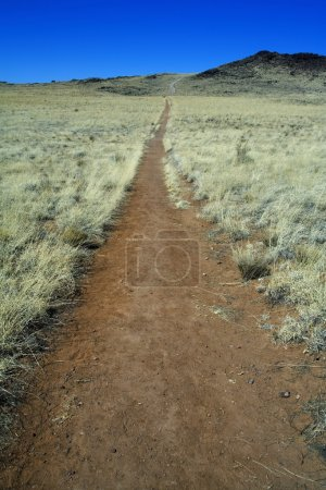 Trail Leading To A Volcano
