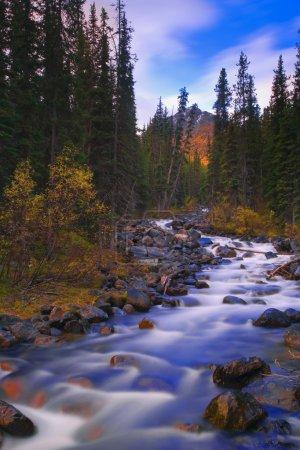 Moraine Creek, Banff National Park, Alberta, Canada