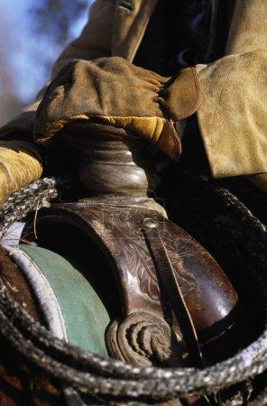 Closeup Of A Saddle