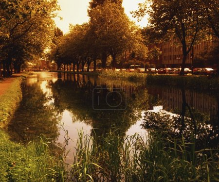 The Grand Canal At Mespil Road, Dublin, Ireland