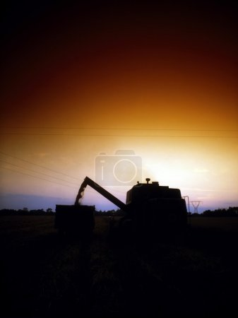Combine Harvester, Co Meath, Ireland