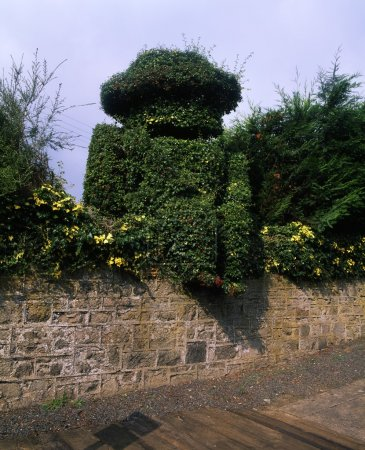 Co Down, Scarva, 19Th C. Topiary Figure Of William Iii At Railway Station, Ireland