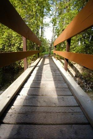 A Foot Bridge, Fairmont, Bc, Canada...