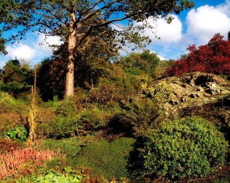 Rowallane Garden, Co Down, Ireland. Mixed Planting In The Rock Garden During Autumn