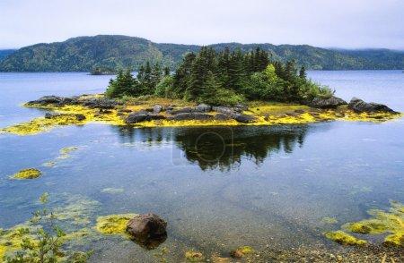 Photo pour Lac près de Swift Current, péninsule Burin, Terre-Neuve, Canada - image libre de droit