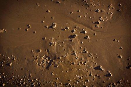 Mud closeup