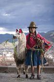 Peruvian Woman With Her Llama (Lama Glama), Cuzco, Peru