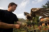 Man With Egyptian Vulture(Neophron Percnopterus), Pokhara, Nepal
