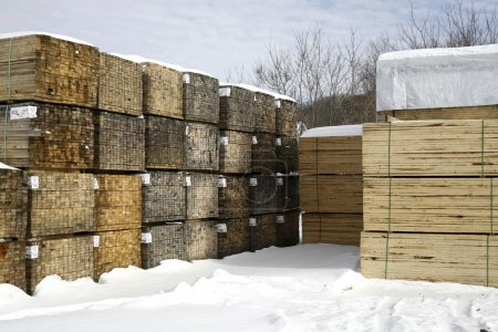Piles Of Softwood Lumber In Winter