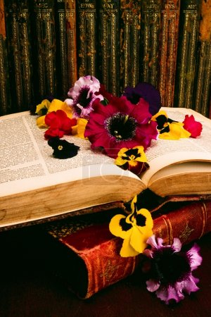 Historic Books And Floral Arrangement