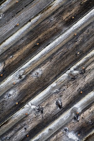 Photo for Weathered Wood - Royalty Free Image