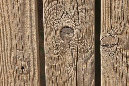 Photo pour Noeuds en planches de bois - image libre de droit