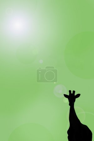 Photo for Silhouette Of A Giraffe - Royalty Free Image