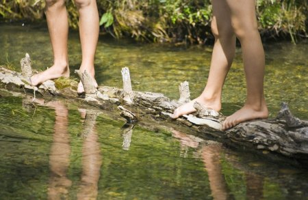 Children Standing On A Log In A Stream