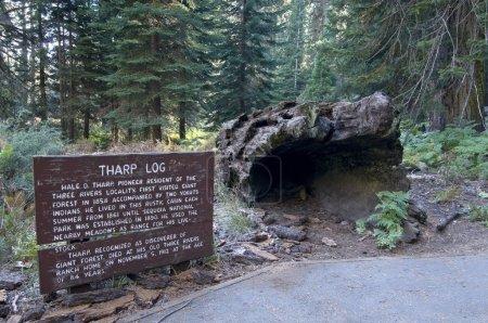 Photo pour Tharp log n Parc national de Sequoia, Californie, États-Unis - image libre de droit