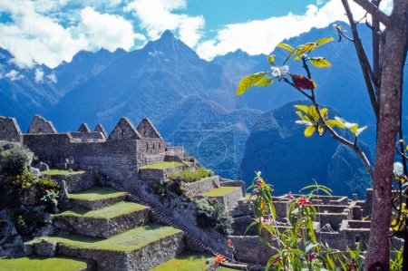 Machu Picchu, Peru, South America, Pre-Columbian Historical Site